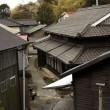 Aoshima isola dei gatti: per ogni umano ci sono 6 felini 21