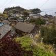 Aoshima isola dei gatti: per ogni umano ci sono 6 felini 06