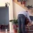 gatto cacciato dalla sedia dal padrone si vendica 02