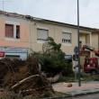 Maltempo Toscana-Marche: scuole chiuse, tetti scoperchiati, alberi abbattuti FOTO-VIDEO4