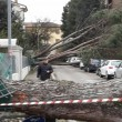 Maltempo Toscana-Marche: scuole chiuse, tetti scoperchiati, alberi abbattuti5