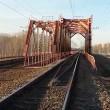 VIDEO YouTube: si arrampica su ponte e tocca cavo da 30mila volt, 14enne muore folgorato06