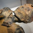 Museo Egizio Torino riapre dopo 3 anni FOTO nuovo allestimento1