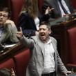 """Camera. Sel lancia crisantemi, M5s e Brunetta urlano: """"Fascisti"""