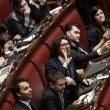 """Camera. Sel lancia crisantemi, M5s e Brunetta urlano: """"Fascisti06"""