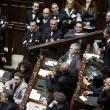 """Camera. Sel lancia crisantemi, M5s e Brunetta urlano: """"Fascisti07"""