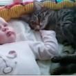 Neonato scambia gatto per peluche, ecco cosa succede VIDEO