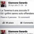 """Gerardo Giannone (Pd) dà della """"zoccola"""" a Paola Taverna di M5S su Twitter FOTO2"""