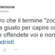 """Gerardo Giannone (Pd) dà della """"zoccola"""" a Paola Taverna di M5S su Twitter FOTO"""