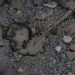 Terremoto Nepal, 39 italiani non si trovano12