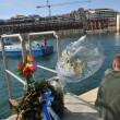 Costa Concordia, ultimo viaggio: relitto arriva ex Superbacino19