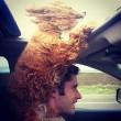 Cani in auto al finestrino: i musi e le espressioni più buffe FOTO 4