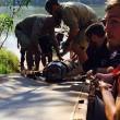 coccodrillo lungo 4,3 m spaventava cani e persone: 6 guardia parco lo catturano05