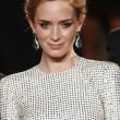 "Cannes: ""Sicario"" su narcos messicani con Benicio Del Toro ed Emily Blunt04"