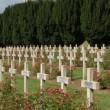 Giornali di 100 anni fa: cronache e foto, massacro di 650 mila italiani09
