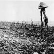Giornali di 100 anni fa: cronache e foto, massacro di 650 mila italiani04