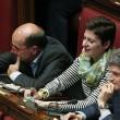 Italicum, deputati Pd usano palline per i gatti per bloccare tasto del voto FOTO