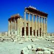 Isis in Siria minaccia Palmira, città gioiello patrimonio dell'umanità 5