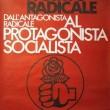 Radicali: all'asta foto, dipinti, Il Mondo e... una pianta di marijuana04