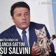#gattisusalvini: pagina Facebook del leader Lega invasa dai mici FOTO 6