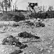 Giornali di 100 anni fa: cronache e foto, massacro di 650 mila italiani