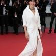 Sophie Marceau hot al Festival di Cannes: dopo il seno, le mutande FOTO 6