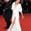 Sophie Marceau hot al Festival di Cannes: dopo il seno, le mutande FOTO 8