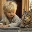 Hai un gatto? Potresti diventare pazzo. Colpa della toxoplasmosi