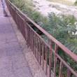 Genova: Bisagno, tutto fermo. Dopo Burlando tocca a Toti, la stagione delle piogge è vicina 2
