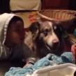 """VIDEO YouTube: cane affamato dice """"mamma"""" prima del bimbo, lui non la prende bene4"""