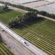Cina, treno ad alta velocità attraversa il deserto di Gobi FOTO 4