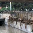 Georgia, inondazione a Tbilisi: almeno 8 morti. Animali in fuga dallo zoo01
