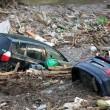 Georgia, inondazione a Tbilisi: almeno 8 morti. Animali in fuga dallo zoo04