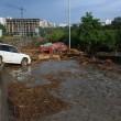 Georgia, inondazione a Tbilisi: almeno 8 morti. Animali in fuga dallo zoo06