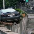 Georgia, inondazione a Tbilisi: almeno 8 morti. Animali in fuga dallo zoo09