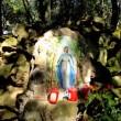 VIDEO YouTube - Madonna a Ischia, il racconto dell'apparizione del 1994 7