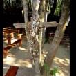 VIDEO YouTube - Madonna a Ischia, il racconto dell'apparizione del 1994 6