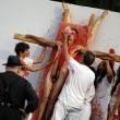 Palermo, animalisti contro la mostra di Nitsch: animali squartati e sangue FOTO 2