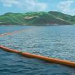Pulire l'oceano dai rifiuti in plastica: progetto di Boyan Slat, 20 anni FOTO
