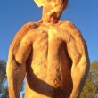 Roger, il canguro palestrato: 89 kg di muscoli per 2 metri di altezza02