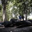 Tiburtina Roma, centinaia di profughi accampati 04