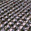 VIDEO YouTube. Yoga Day in India: in 35mila da 84 Paesi, 2 Guinness Record vinti6