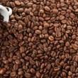 Caffè a rischio: nel 2050 ne berremo la metà, colpa del clima