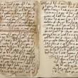 Alba Fedeli, l'italiana che ha scoperto una copia del Corano di 1370 anni fa03