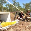 Australia, 75 teste coccodrillo marino abbandonate in un frigo