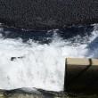 California, 96 mln di palline contro siccita1