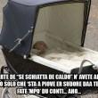 Principessa Charlotte rosica male, Baby George ti disprezza: piccoli reali su Fb FOTO 5