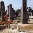Sampdoria sulla tomba di Vujadin Boskov, oggi. Qualcuno ci era già andato...FOTO2