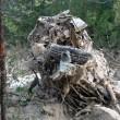 Frana uccide in Cadore (Belluno): travolto parcheggio, 3 morti sotto acqua e fango17