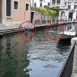 Venezia, bagno nudo nel Canal Grande, turisti senza maglietta a San Marco 7